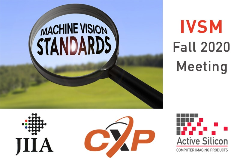 Image for the IVSM Fall 2020 report